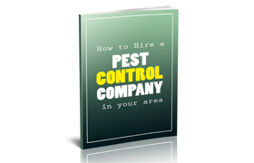 How To Hire a Pest Control Company In Your Area