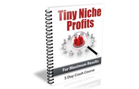 Tiny Niche Profits