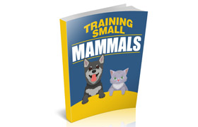 Training Small Mammals