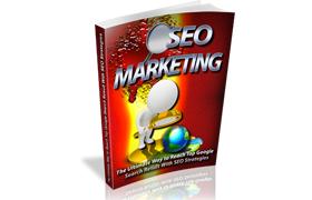 SEO Marketing Niche Minisite PSD HTML Template