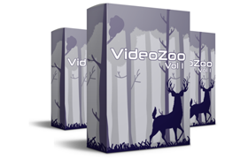 Video Zoo Vol 1