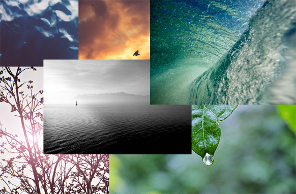 75 Nature Stock Photos