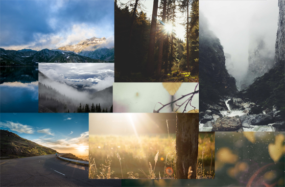 77 Mountains and Forests Stock Images