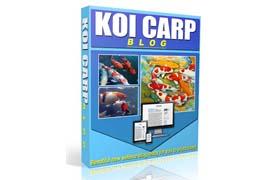Koi Carp Blog