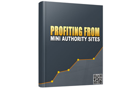 Profiting From Mini Authority Sites