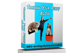Training Your Puppy Blog