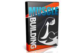 Muscle Building Videos Lessons