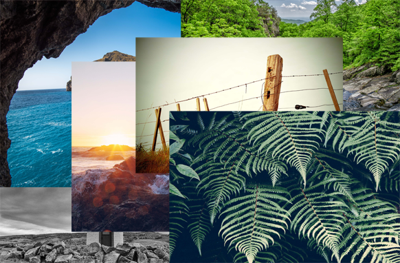 119 Beautiful Outdoors Stock Images