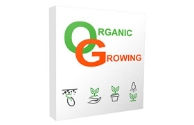 Organic Growing Blog