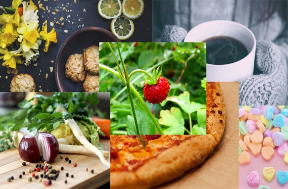 119 Food Stock Images