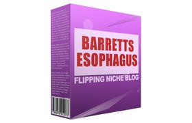 Barretts Esophagus Flipping Niche Blog