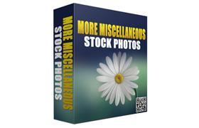 More Miscellaneous 70 Stock Photos