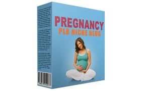 Pregnancy PLR Niche Blog