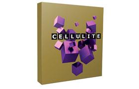 Cellulite Blog