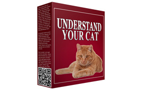 Understand Your Cat