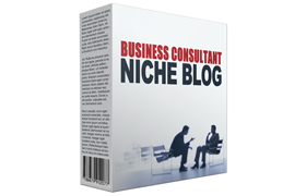 Business Consultant Niche Blog
