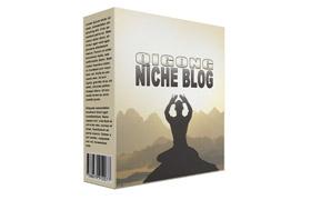 Qigong Niche Blog