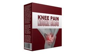 Knee Pain Niche Blog