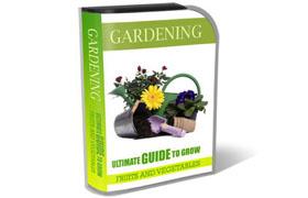 Gardening HTML PSD Template