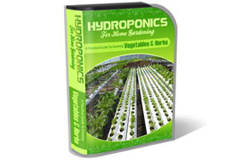 Hydroponics WP HTML PSD Template