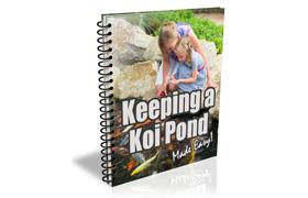 Keeping a Koi Pond