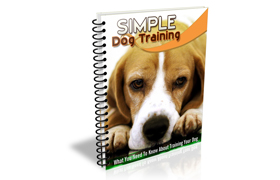 Simple Dog Training