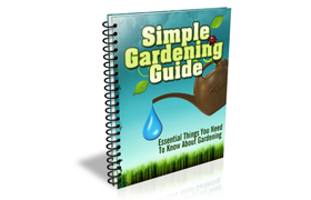 Simple Gardening Guide
