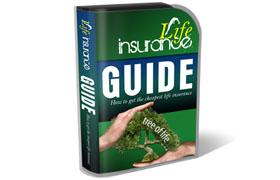 Life Insurance HTML PSD Template