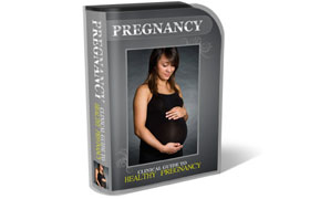 Pregnancy WP HTML PSD Template