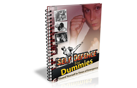Self Defense For Dummies