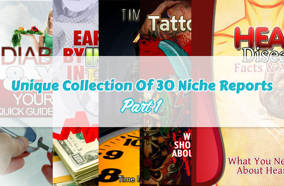 Unique Collection Of 30 Niche Reports Part 1