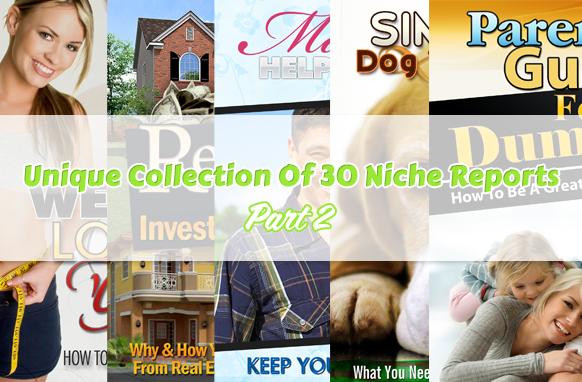 Unique Collection Of 30 Niche Reports Part 2