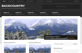 Back Country Pro WP Theme Genesis FrameWork