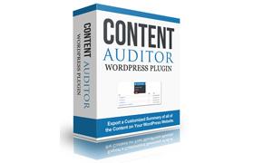Content Auditor WordPress Plugin