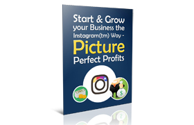 Start and Grow Your Business The Instagram Way - Picture Prefect Profits
