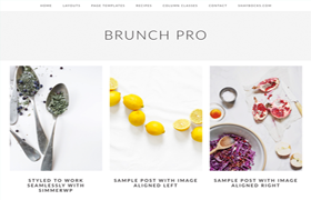 Brunch Pro Genesis FrameWork WordPress Theme