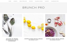 Brunch Pro Genesis FrameWork Wordpress Theme