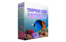 Tropical Fish PLR Articles