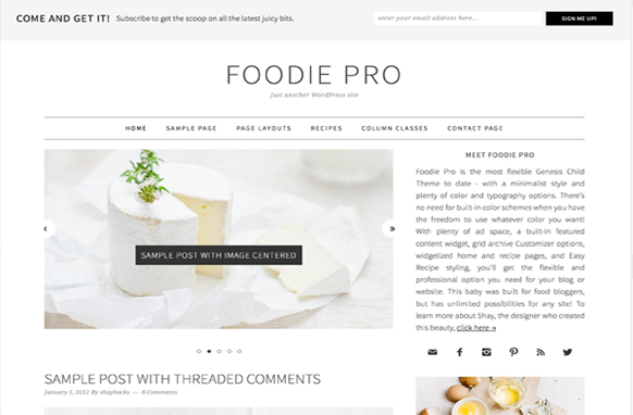 Foodie Pro Genesis FrameWork WordPress Theme
