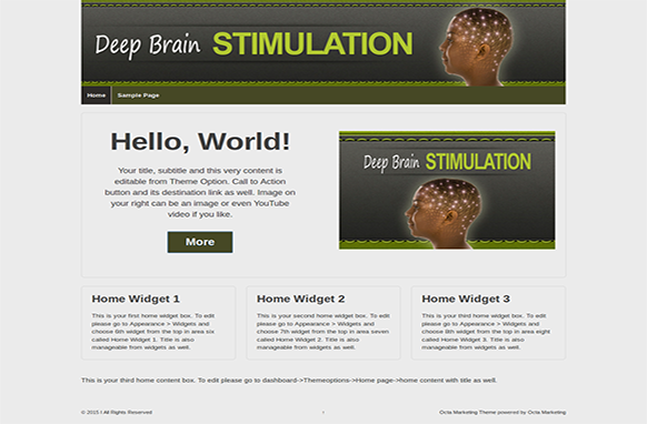 Deep Brain Stimulation Premium WordPress Theme