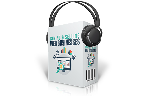 Buying and Selling Web Businesses