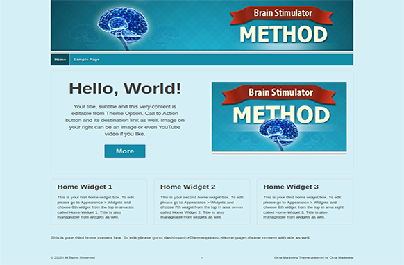 Brain Stimulation Method Premium WordPress Theme