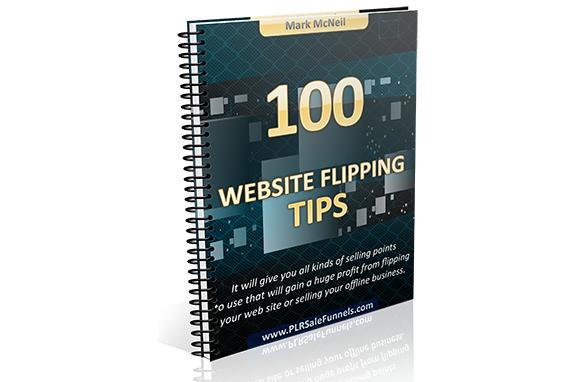 100 Website Flipping Tips