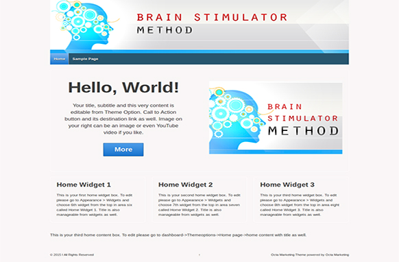 Brain Stimulator Method Premium WordPress Theme