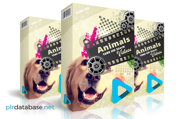 Animals 1080 HD Stock Videos