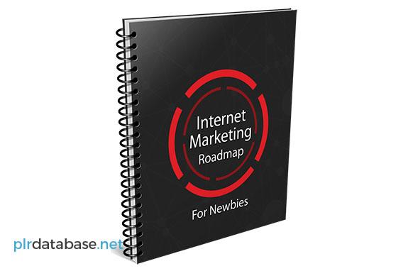 Internet Marketing Roadmap For Newbies