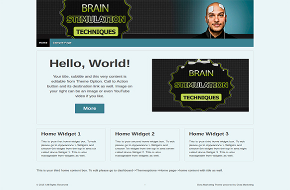 Brain Stimulation Techniques Premium WordPress Theme