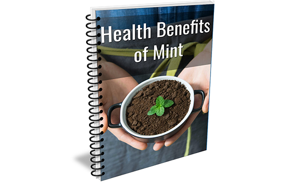 Health Benefits of Mint