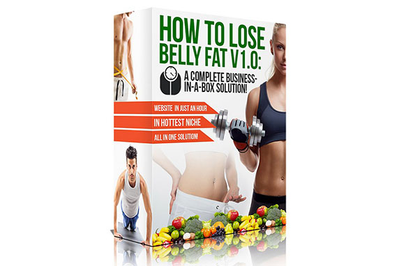 How To Lose Belly Fat Business-In-A-Box