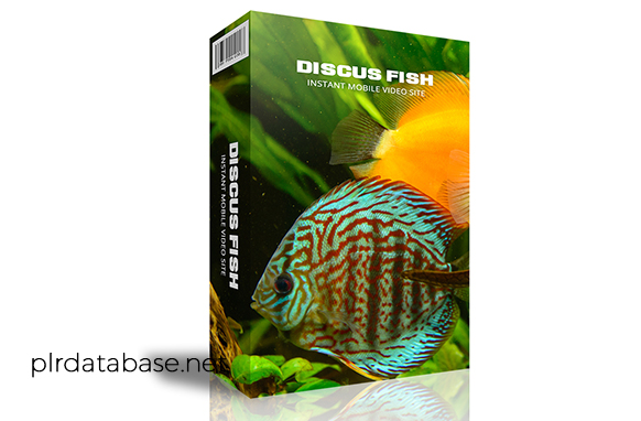 Discus Fish Instant Mobile Video Site